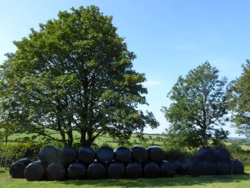 Haylage Stacked