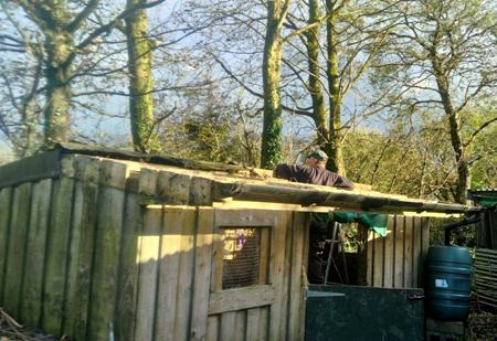 Goat Shed Repairs