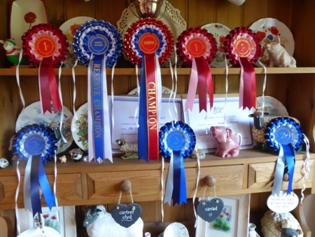 Fleece winning rosettes